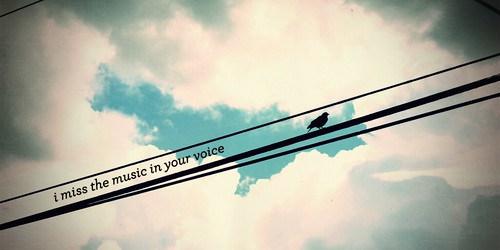 The Music In Your Voice