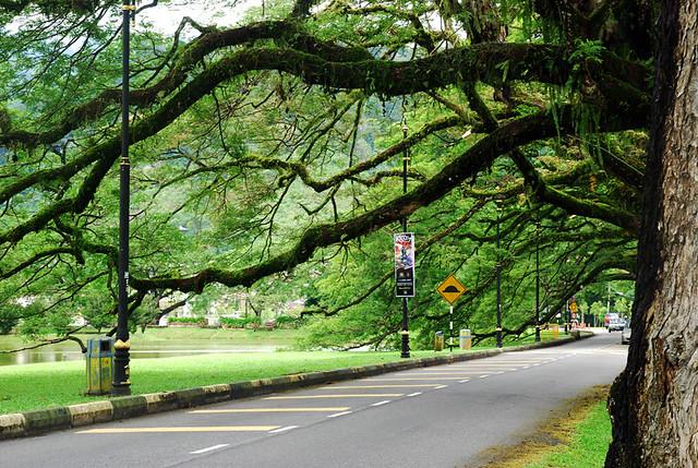 Taman Tasik Taiping | Flickr - Photo Sharing!