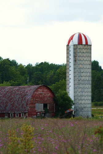 Old Barn Nice Silo