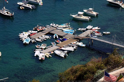 little boats docked in catalina harbor    MG 2161