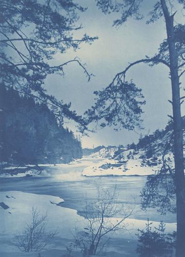 cyanotype riksantikvarieämbetet theswedishnationalheritageboard commons:event=commonground2009
