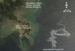 Ölpest Übersicht
