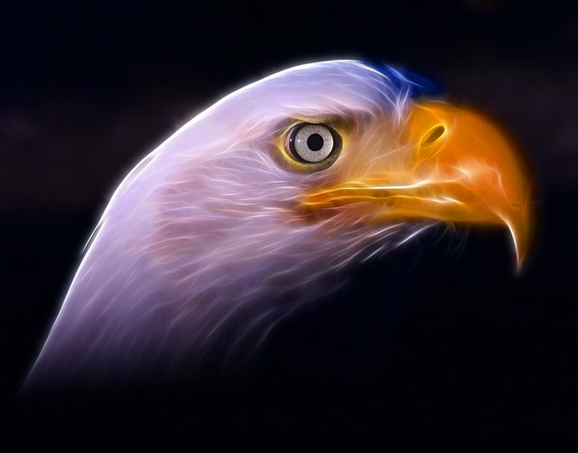 American National Symbols America's n...