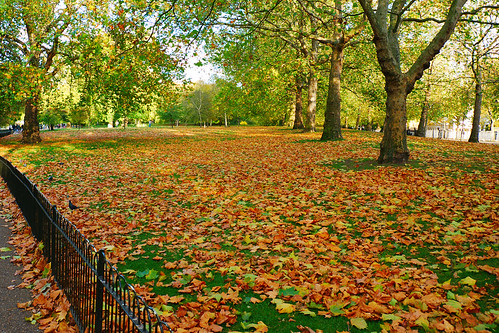 Take in the beautiful colours of autumn on a cottage holiday