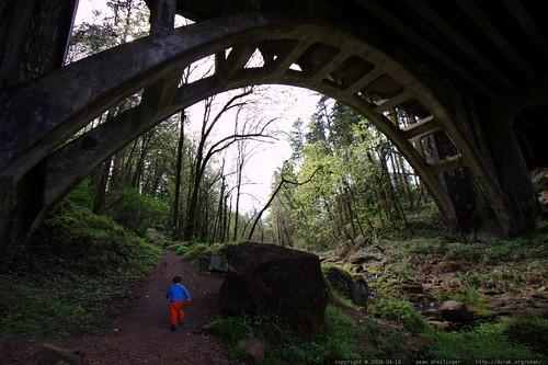 running under the bridge    MG 2144