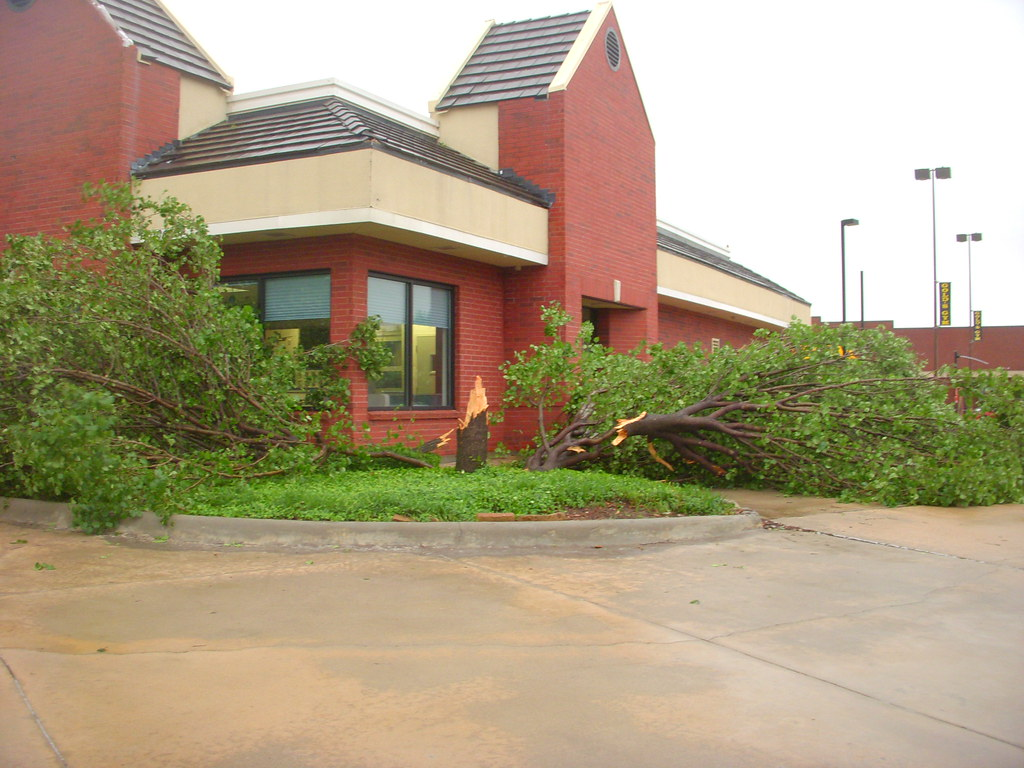Trees Downed Near Cowboys Practice Facility