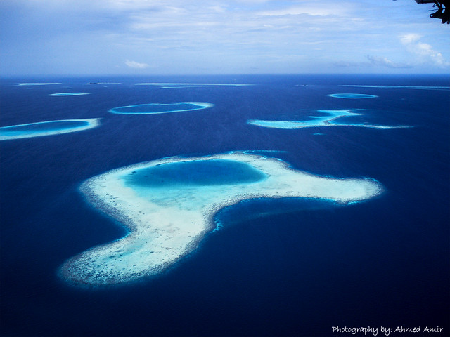 Over the reefs