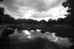 Clouds And Pond