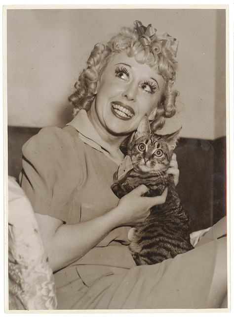 Comedian Violet Carlson and cat in the dressing room, Sydney, 1930's / Sam Hood