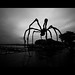 Arachnophobia @ Zurich Switzerland by Toni_V