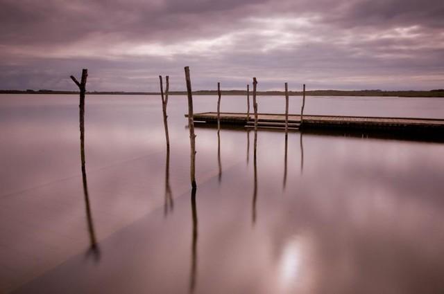 Lac de Soustons 3