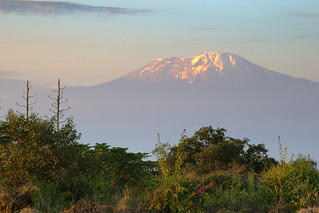 Last Light on Kilimanjaro