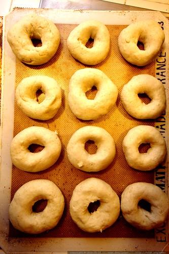 a dozen sourdough bagels, ready to boil and bake    MG 3419