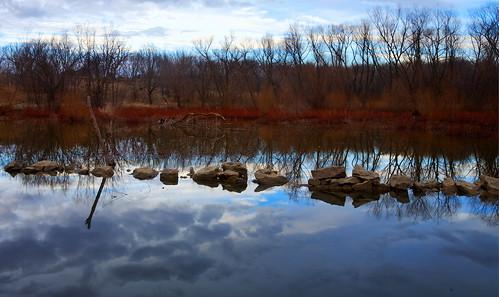 creek racoon clintonlake abigfave abigfav betterthangood