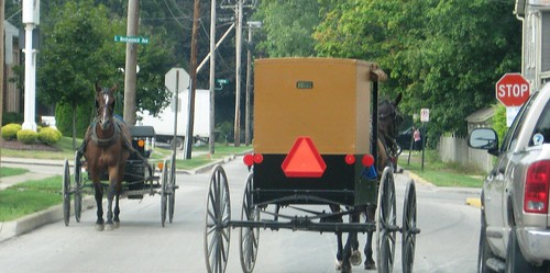 amish August (1)