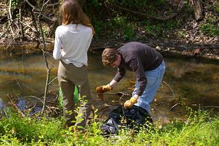 Gillies Creek 4.18.09 (13)