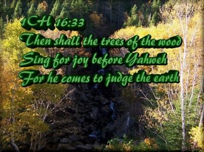 Singing Trees - Ken Rich