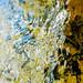 water-consciousness (detail) by Jos van Wunnik