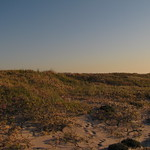 Behind the dunes, Fire Island National Seashore