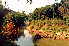 Trinity River, River Legacy Parks, Arlington