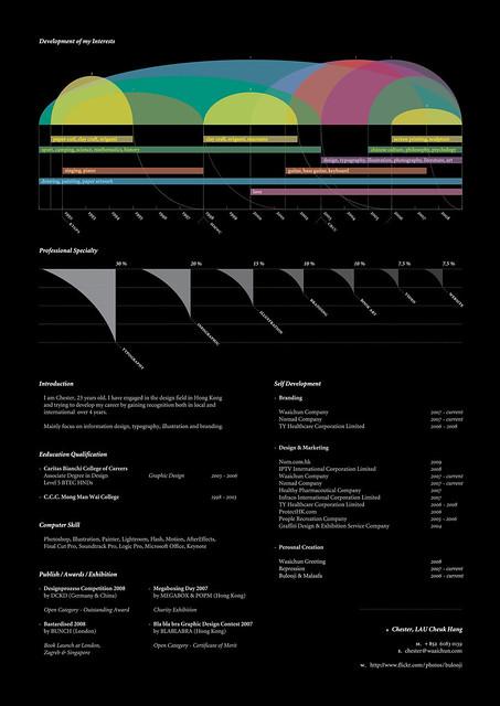 Personal Resume (2009)