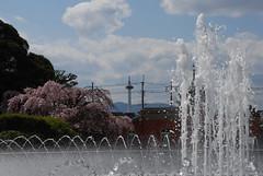 京都国立博物館 噴水