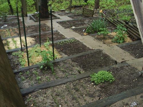 Terrace garden terrace and garden beds on pinterest for Terrace vegetable garden kerala