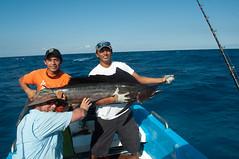 fish(1.0), fishing(1.0), sea(1.0), recreation(1.0), outdoor recreation(1.0), recreational fishing(1.0), boating(1.0), jigging(1.0), big game fishing(1.0),