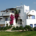 Greece_Cyclades_Naxos_Ammos Studios