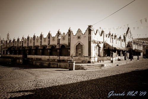 Garibaldi - Puebla