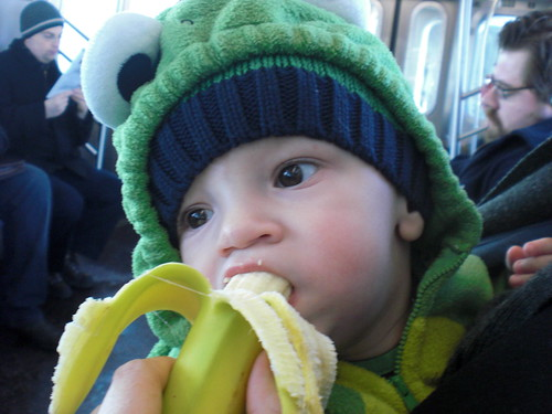 banana eating frog on subway