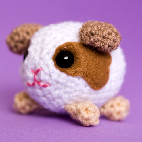 Amigurumi Guinea-Pig Flickr - Photo Sharing!