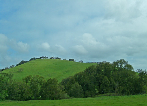 California Hillscape