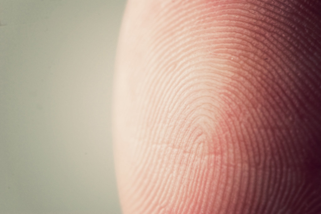 38-365 Fingerprint
