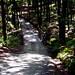 Parque Biológico da Serra das Meadas