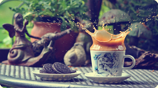 Cookie Splash #1