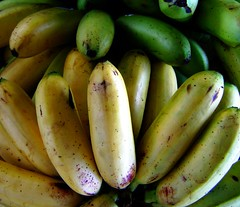 summer squash(0.0), plant(0.0), cooking plantain(1.0), banana(1.0), produce(1.0), fruit(1.0), food(1.0),
