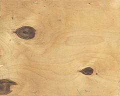 Eyed Wood background texture