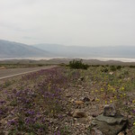 Death Valley National Park, California (4)