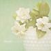 Gardenias in Milk Glass by Shana Rae {Florabella Collection}