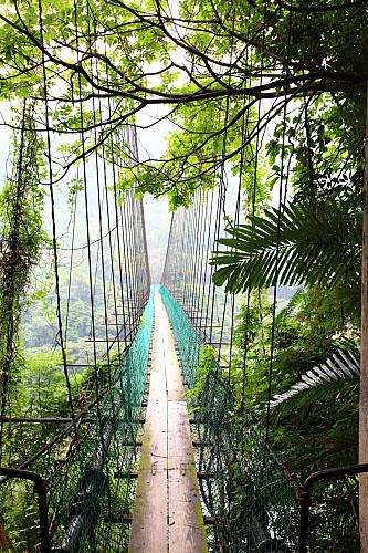 Z815義興吊橋