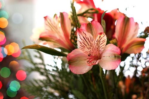 Happy Bouquet Wednesday!
