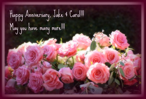 Anniversary Wishes & Roses for Jake & Carol!!!!