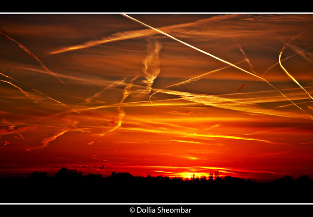 Blood in the Sky (Part2) - Schiedam