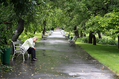 Peoples and bench
