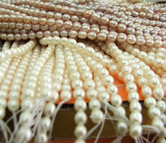 coral(0.0), invertebrate(0.0), seashell(0.0), starfish(0.0), animal(1.0), pearl(1.0), jewellery(1.0),