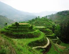 Guangxi 廣西  2006 700+views