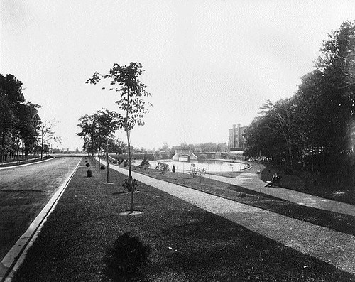 A photograph of Central Park and the O'Connor Street Bridge in the Glebe, 1912