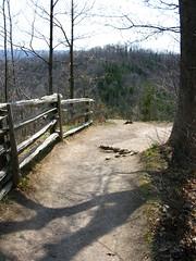Webster's Falls trail 4