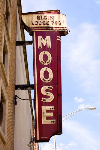 Moose Lodge-Elgin, IL by William 74